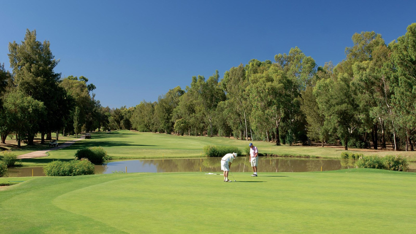 12th Hole at Penina Hotel and Golf Resort