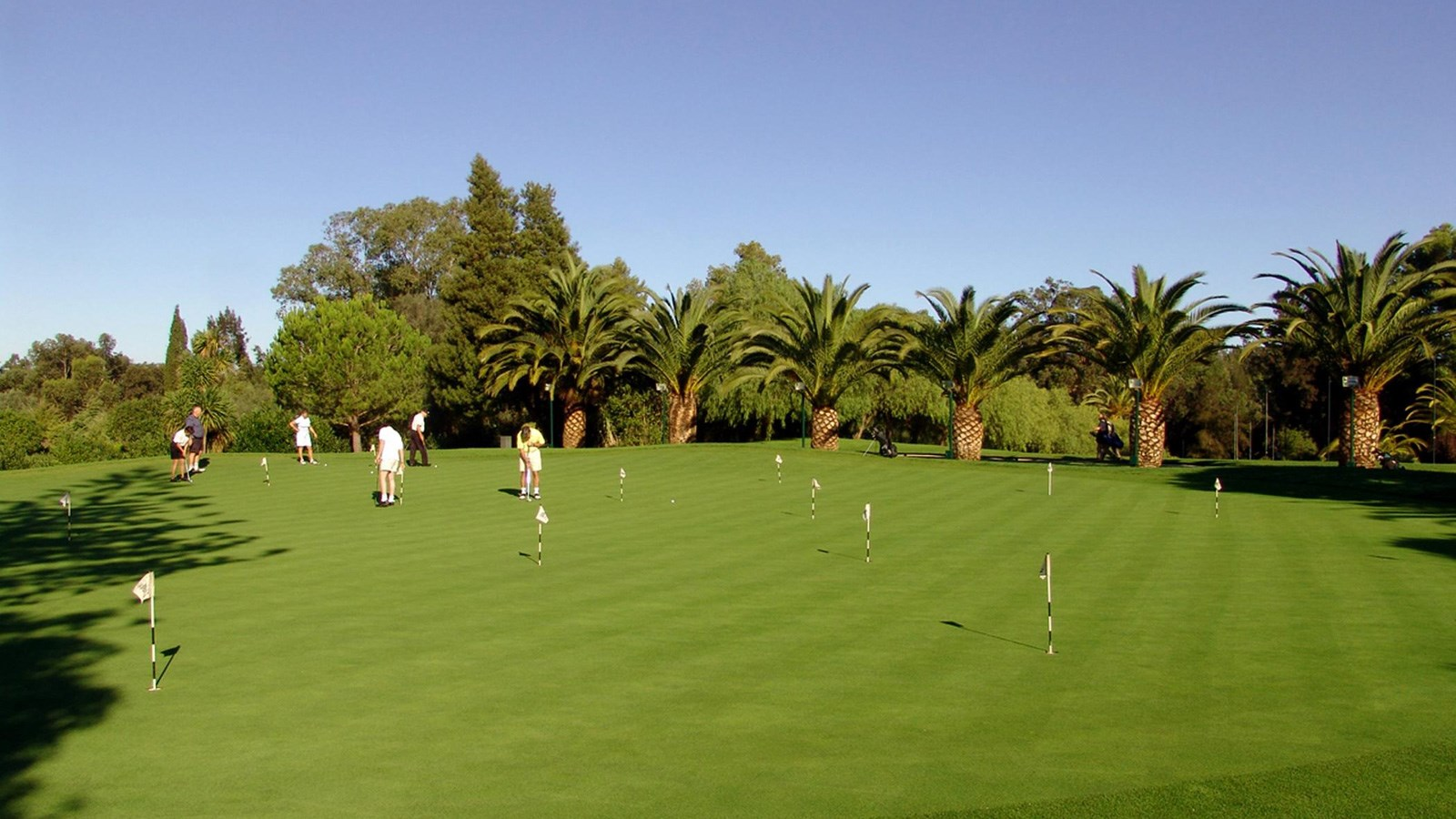 Putting Green at Penina Hotel and Golf Resort