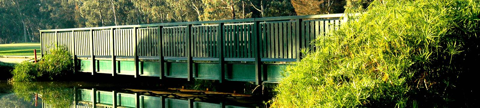 Bridge and trees on the Sir Henry Cotton Championship Course at Penina Hotel and Golf Resort