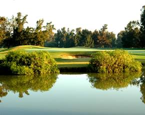 Greenery on the Sir Henry Cotton Championship Course at Penina Hotel and Golf Resort
