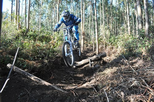 Downhill Monchique 11393649475